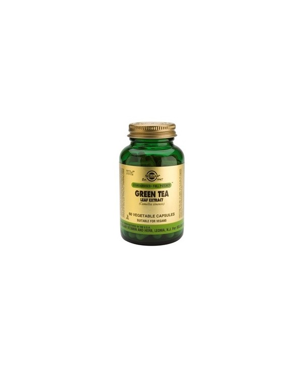 SOLGAR GREEN TEA LEAF EXTRACT 60 CAPS